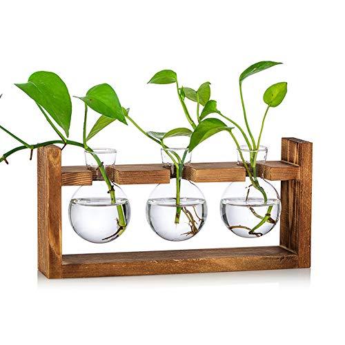 Blumenvase Vintage Kleine Vasen Für Tischdeko Modern Glas Reagenzgläser Für Blumen Mit Ständer Holz Propagation Station Für Wohnzimmer Outdoor Taufe Geburtstag Hydroponik Deko