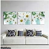 Dlfalg - Cuadro decorativo de pared (50 x 50 cm, 3 unidades), diseño de margarita de margarita...