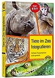 Tiere im Zoo fotografieren: komplett in Farbe. Wunderbare Aufnahmen im Zoo