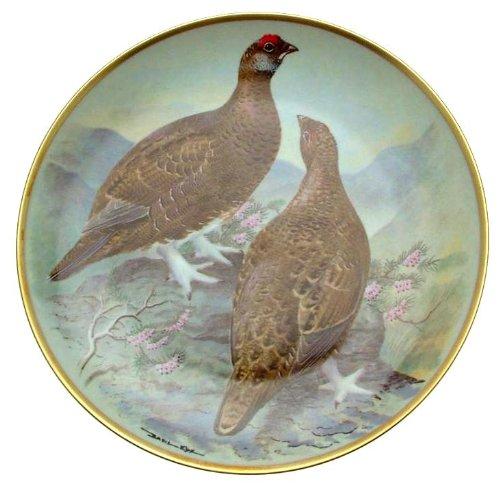 C1979 Haviland Limoges Franklin Porzellan Gamebirds der Welt Basilikum Ede CP1888 Grouse, Rot