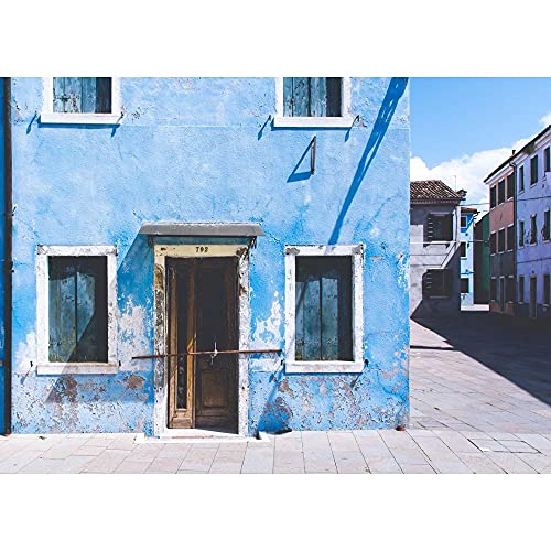 Fondo de fotografía de Vinilo, Fondo de fotografía de Tema de Pared, Accesorios de fotografía de Retrato A4 10x10ft / 3x3m