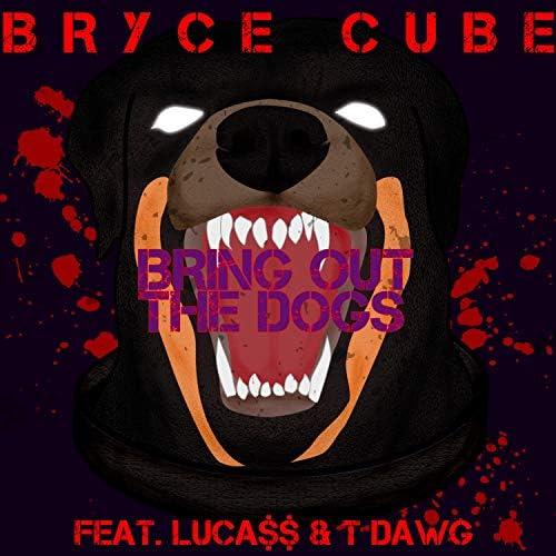 Bryce Cube