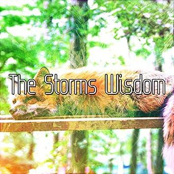 The Storms Wisdom
