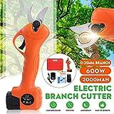 ZDYLM-Y 16,8V eléctrico Tijeras de podar, 25 mm de diámetro de Corte, Anti-Corte de Seguridad Eléctrica podador, Hand Held inalámbrico Rama de árbol Cortador
