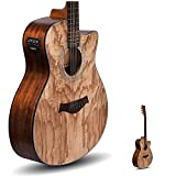 Kadence Acoustica Series,Electro Acoustic Guitar Ash/Zebra Wood with inbuilt tuner (Ash Wood)