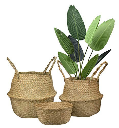 Yesland Woven Seagrass Belly Basket for Storage - Set of 3 - Ideal Plant Pot, Laundry & Picnic Basket for Home or Outdoor Use(S,M,L)