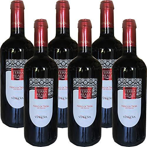 Nero di Troia Puglia IGP   Vino Rosso   Cantine Vin Nova   6 Bottiglie 75Cl   Idea Regalo