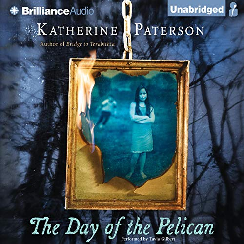The Day of the Pelican cover art