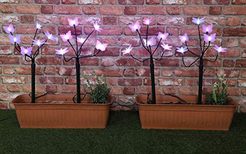Christmas Concepts 4 Libellule/Butterfly Garden Sticks avec LED éclairages- Lampes de Jardin