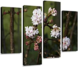 Viburnum bodnantense Canvas Wall Art Hanging Paintings Modern Artwork Abstract Picture Prints Home Decoration Gift Unique ...