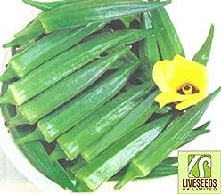 Liveseeds - Indian Okra-Chanchal 30 Finest Seeds