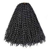 Water Wave Crochet Hair, Passion Twist Crochet Hair Braids, Ombre Long Bohemian Crochet Hair Braid (18''-7 packs, 1b)