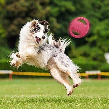 SKRTUAN Frisbee et disques de lancement - Jouet interactif pour chien de taille moyenne et grande - Jouet pour chien qui coule en plein air