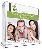 One's Own Queen Size Premium Hypoallergenic Eucalyptus Waterproof Mattress Protector - Vinyl Free - Renewable Organic White Tencel Fiber Top with TPU Waterproofing