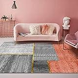 Rectángulo Rojo ladrillo Alfombra de área Alfombra de Lujo Moderna Tapete Antideslizante Muy Suave, Utilizado para alfombras de Interior y Exterior 200x300cm(78.7x118inch)