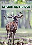 El ciervo en Francia calendario pared 2018DIN A3vertical