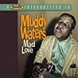 Songtexte von Muddy Waters - A Proper Introduction to Muddy Waters: Mad Love
