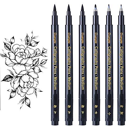 Kalligraphie Stifte, Facio 6 Stück Hand Lettering Pens,Finelliner pens, Kugelschreiber für Anfänger, Kunstzeichnungen, Unterschrift, Aquarellillustrationen, Aufzählungszeichen(4 Größen)