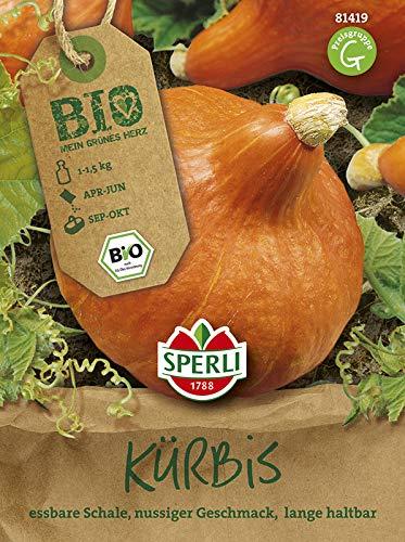 Sperli Gemüsesamen Hokkaido-Kürbis Solor Bio-Saatgut, grün