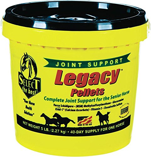 best joint supplement for older horses