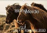 Islandpferde - Der Tölt Kalender (Wandkalender 2020 DIN A3 quer)