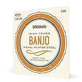 D'Addario EJ63I Cordes pour Banjo