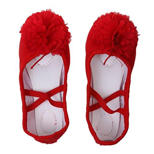 Colcolo Zapatos de Baile Clásicos para Niñas Zapatillas de Ballet de Lona Suela de Cuero Mitad - rojo, 29