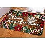 Nopersonality Feliz Navidad felpudo suave entrada camino antideslizante alfombra Poinsettia piso puerta interior exterior, multicolor