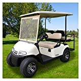 10L0L Deluxe Foldable Golf Cart Windshield Fits EZGO RXV,Clear Portable Windshield for Golf carts