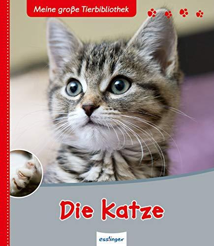 Die Katze: Sachbuch für Vorschule & Grundschule (Meine große Tierbibliothek)
