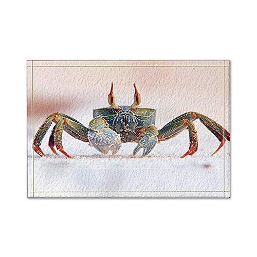 ottbrn Haarkleurige krabben in witte badmat antislip, rechthoekige vloeringangen, buiten-binnen-voordeurmat, 16 x 24 inch badmat
