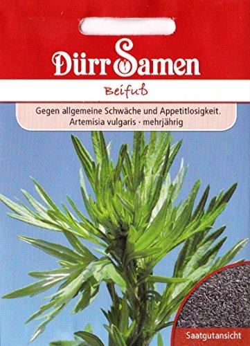 Frauenkraut, Beifuß, mehrjährig, Artemisisa vulgaris, ca. 800 Samen