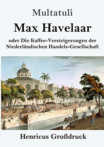 Max Havelaar (Großdruck): oder Die Kaffee-Versteigerungen der Niederländischen Handels-Gesellschaft
