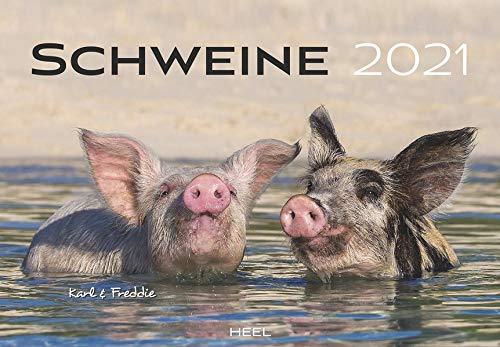 Schweine 2021: Der sympathische Schweine-Kalender mit den charmanten Namen