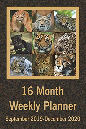 16 Month Weekly Planner September 2019-December 2020: Daily...