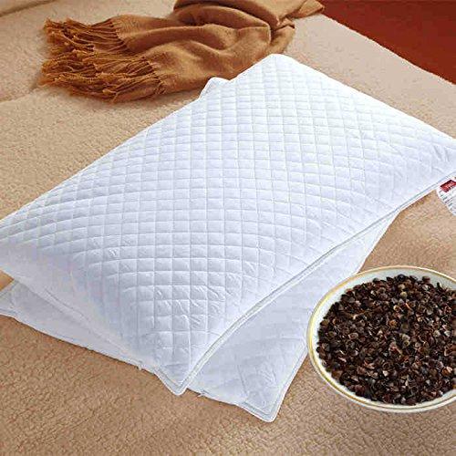 QianCX Casa texitle Almohadas blancas100% Trigo sarraceno Almohada de Trigo Duro Almohada CuelloSalud Almohada Tartar de Trigo sarraceno Superficie Dos Cremallera