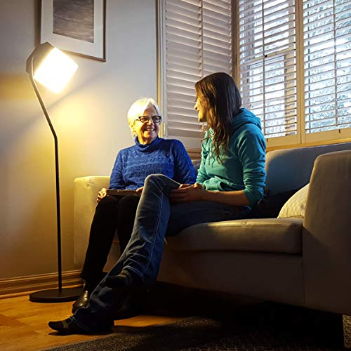 Northern Light Technologies Flamingo Light Therapy