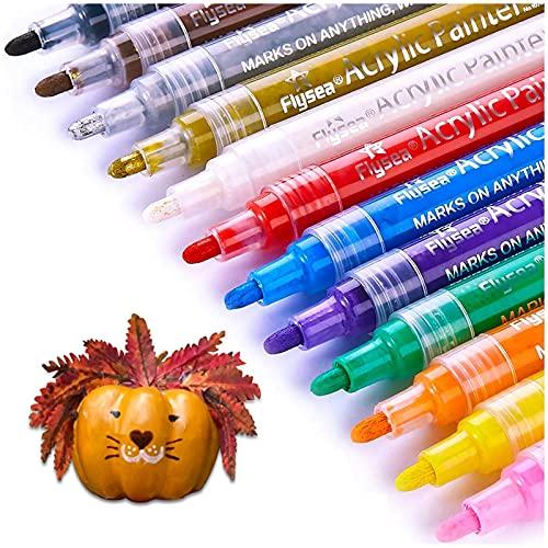Acrylic Paint Pens Set 12Colors, Paint Markers for Rock Painting,Pumpkin...
