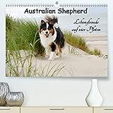Calvendo Premium Kalender Australian Shepherd - Lebensfreude auf vier Pfoten: Die Abenteuer eines powervollen Australian Shepherd (hochwertiger DIN A2 Wandkalender 2020, Kunstdruck in Hochglanz)