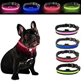 Talis Light-Up Dog Collar Solar Charging & USB Rechargeable LED Collar Improved Pet Safety &Visibility at Night Waterproof Collar (Large, Blue)