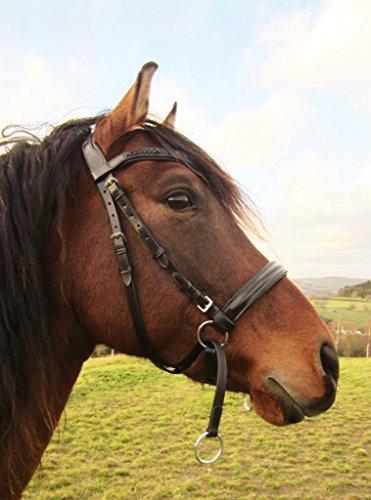 PS Pferdeartikel | Bitless Bridle - 2