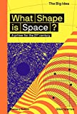What Shape Is Space?: A Primer for the 21st Century (The Big Idea Series)