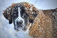 1000ピースの木製パズル、雪の中の子犬のパターン、ホームオフィスの装飾