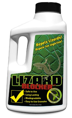 BuyBlocker All Natural Repellent, 4-Pound, Lizard Blocker