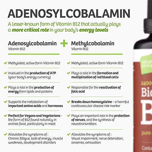Bioactive-Liquid-Vitamin-B12-Methylcobalamin-Plus-Adenosylcobalamin-50ml-2400-mcg-High-Strength-Vegan-Energy-Sleep-Sublingual-Drops-comparable-to-injections-in-Pure-Water-Made-in-The-UK