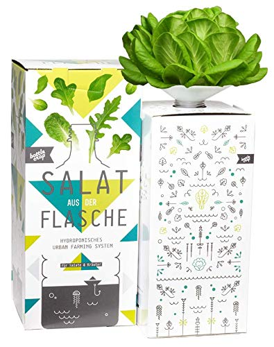 Bottlecrop - Grüner Blattsalat | Salat aus der Flasche | Anzuchtsystem | Urban Farming | Hydrokultur