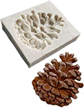Best pine cone removal Reviews