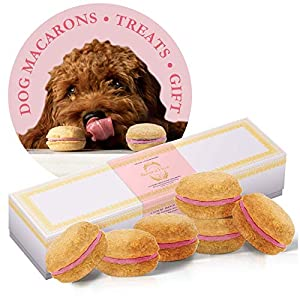 Bonne et Filou Dog Treats Dog Macarons Luxury Handmade Dog Gifts Dog Birthday Healthy and Delicious Gourmet Dog Snack with All-Natural Ingredients (Strawberry)