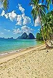 Fondo de Playa Tropical Junto al mar Verano Boda bebé cumpleaños Despedida de Soltera Fiesta Foto telones de Fondo Accesorios A16 7x5ft / 2,1x1,5 m