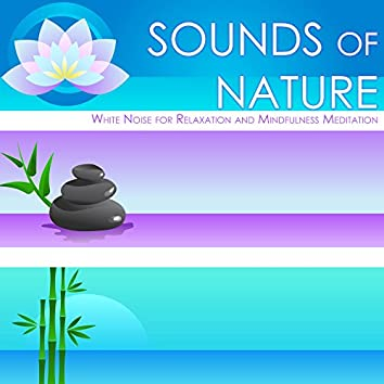 Sounds of Nature - White Noise for Relaxation and Mindfulness Meditation